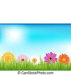 ευφυής , λουλούδια