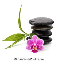 ζεν , βότσαλο , balance., ιαματική πηγή , και , healthcare , concept.
