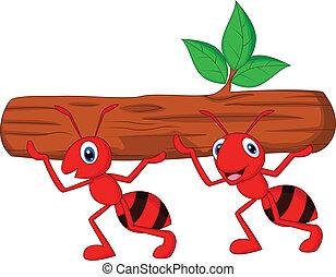 ζεύγος ζώων , από , μυρμήγκι , γελοιογραφία , άγω , κούτσουρο
