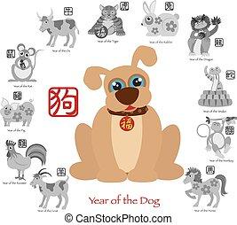 ζωδιακός , δώδεκα , κινέζα , χρώμα , σκύλοs , εικόνα , έτος , καινούργιος