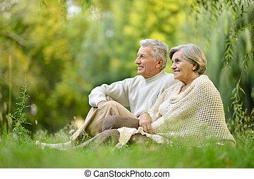 ηλικιωμένος ανδρόγυνο , αναμμένος άρθρο αγρός