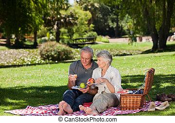 ηλικιωμένος ανδρόγυνο , picnicking , αναμμένος άρθρο ασχολούμαι με κηπουρική