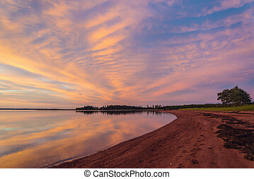 ηλιοβασίλεμα , επάνω , panmure, island's, ακτή