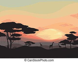 ηλιοβασίλεμα , κυνηγετική εκδρομή εν αφρική
