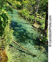 ημέρα , πράσινο , λίμνη , γαλάζιο διαύγεια , ηλιόλουστος , όμορφος , plitvice