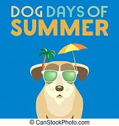 ημέρες , καλοκαίρι , σκύλοs