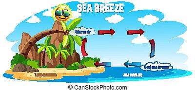 θάλασσα , γη , εκδήλωση , αύρα , οκεανόs , διάγραμμα