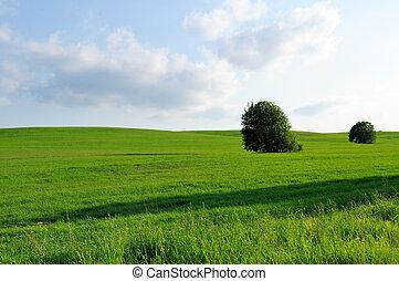 θέα , αγροτικός