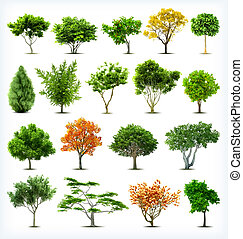 θέτω , από , δέντρα , isolated., μικροβιοφορέας