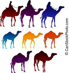 θέτω , γραφικός , άντρεs , άραβας , καμήλες , ιππασία , στοιχεία