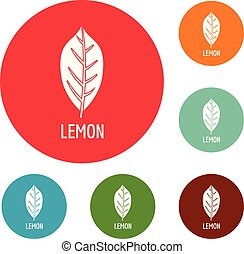 θέτω , λεμόνι , απεικόνιση , μικροβιοφορέας , φύλλο , κύκλοs