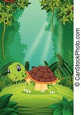 θαλάσσια χελώνα , καθαρά , αγίνωτος αναδασώνω
