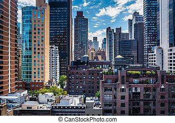 θαλάσσια χελώνα , κτίρια , rooftop , κόλπος , γειτονιά , ...