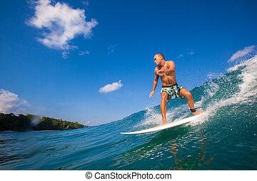 θαλάσσιο σπορ , ένα , wave.gland, σερφ , area.indonesia.