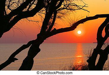θαλασσογραφία , τοπίο , φωτογραφία , όμορφος , ηλιοβασίλεμα