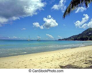 θαλασσογραφία , seychelles