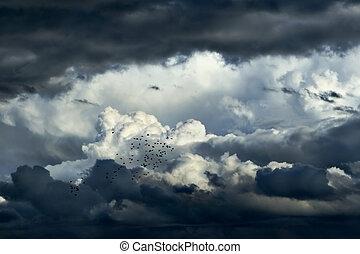 θαμπάδα , καταιγίδα