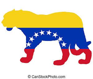ιαγουάρος , βενεζουέλα