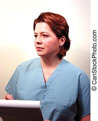 ιατρικός ακάνθουρος , ή , νοσοκόμα , 3