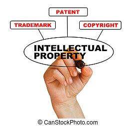 ιδιοκτησία, περιουσία , διανοούμενος