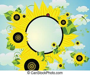 κάρτα , ηλιοτρόπιο