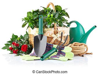κήπος , εξοπλισμός , με , πράσινο , απάτη , και , λουλούδια