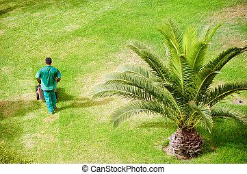 κήπος , εργαζόμενος , άντραs