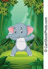 καθαρά , αγίνωτος αναδασώνω , ελέφαντας