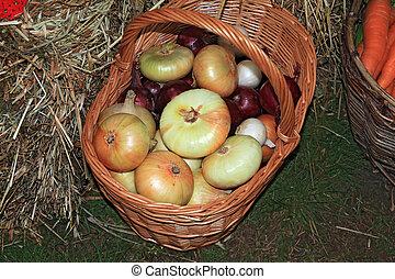 καλαθοσφαίριση , αγροτικός , αγορά , κρεμμύδι