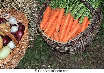 καλαθοσφαίριση , αγροτικός , καρότο , αγορά