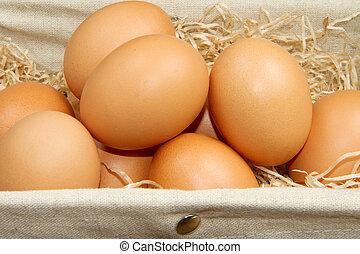 καλαθοσφαίριση , καφέ , αυγά