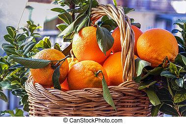 καλαθοσφαίριση , φρέσκος , πορτοκαλέα