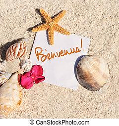 καλοκαίρι , αστερίας , αντικοινωνικότητα , άμμος αξίες , κενό , παραλία
