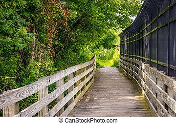 καλοκαίρι , γέφυρα