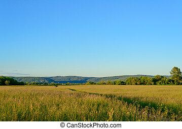 καλοκαίρι , γαλήνειος , τοπίο , αγροτικός
