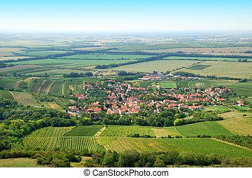 καλοκαίρι , γόνιμος , αμπέλια , πράσινο , χωριό , μικρό