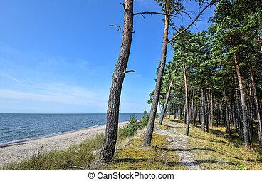 καλοκαίρι , θάλασσα , τοπίο