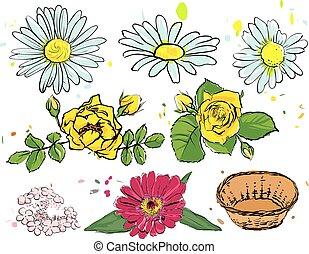 καλοκαίρι , θέτω , τριαντάφυλλο , κίτρινο , camomile, flowers.