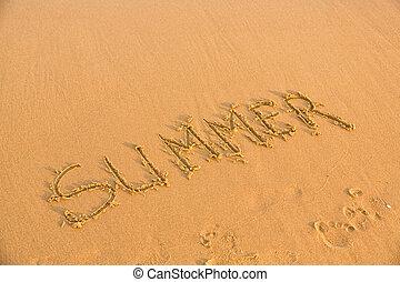 καλοκαίρι , παραλία , λέξη , αμμώδης , κίτρινο