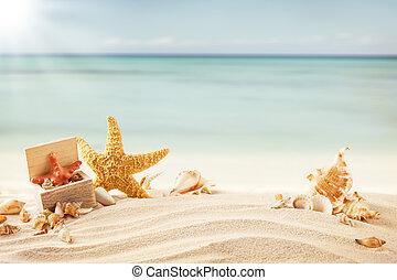καλοκαίρι , παραλία , με , strafish, και , αντικοινωνικότητα