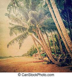 καρίδα , κρασί , tone., δέντρο , άμμοs , αρπάζω με το χέρι ακρογιαλιά