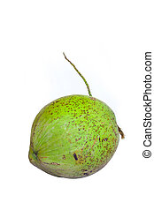 καρίδα , πράσινο
