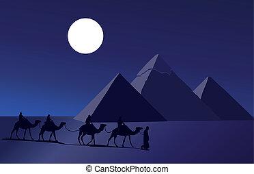 καραβάνι , καμήλα