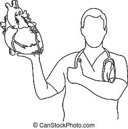καρδιά , δραμάτιο , ανθρώπινος , λειτουργία , γιατρός ,...