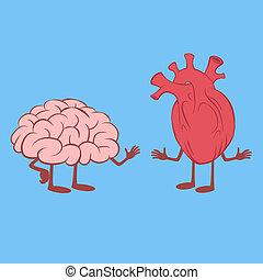 καρδιά , εγκέφαλοs