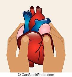 καρδιολογία