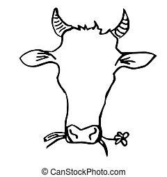 κεφάλι , αγελάδα