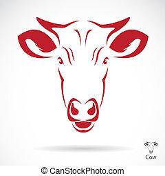 κεφάλι , μικροβιοφορέας , εικόνα , αγελάδα