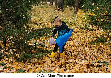 κορίτσι , μικρός , σκουπίδια , φθινόπωρο , συλλογή , δάσοs , κομμάτι , εποχιακός , πάνω