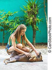 κορίτσι , παίξιμο , σκύλοs